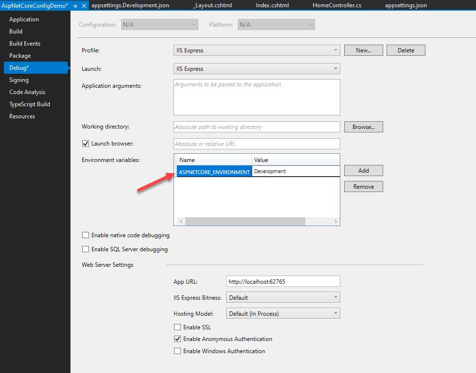 ASP.NET Core Web Application environment in Visual Studio 2019